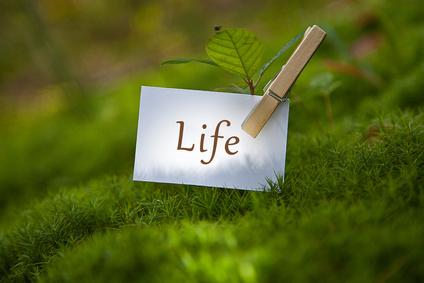 Envisager un bonheur durable