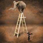 La place de l'Humain dans le coaching : la Peur