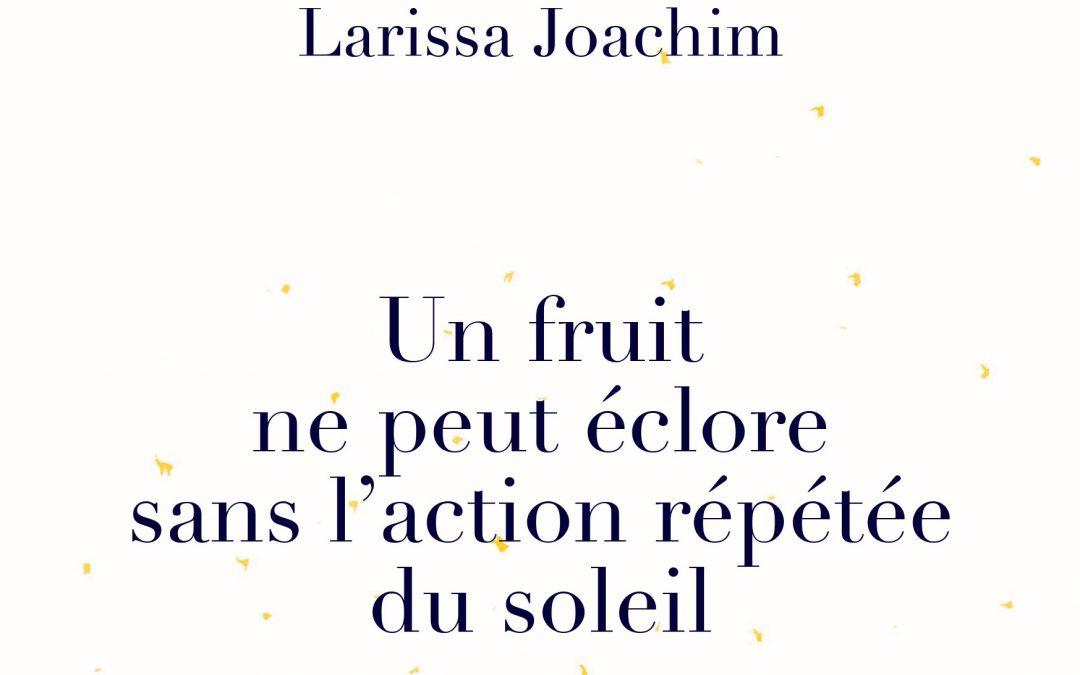 [CHRONIQUE LECTURE] Un fruit ne peut éclore sans l'action répétée du soleil